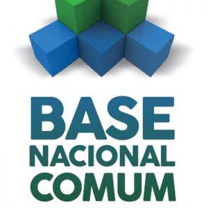 Modelos para se alcançar os objetivos propostos pela BNCC