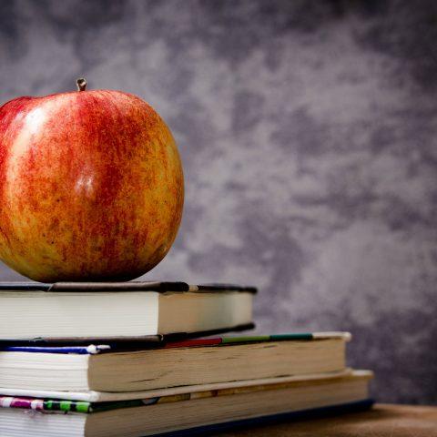 EDUCAÇÃO NO FOCO DE INVESTIDORES ESTRANGEIROS