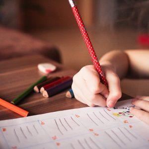 Pasta da Educação segue sem rumo desde o início do governo