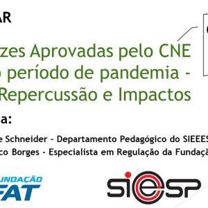 Diretrizes Aprovadas pelo CNE para o período de pandemia – Repercussão e Impactos